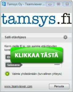 Etätuki - Tamsys Oy